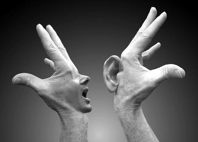 O ureche inteligentă şi o gură pentru a interpreta?