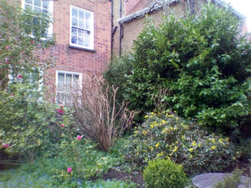 20 Maresfield Gardens… our last address on this planet. Freud Museum in London