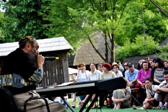 Harry Tavitian concertează la Muzeul Satului
