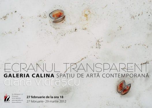 """Vernisaj Diana Vidraşcu, """"Ecranul Transparent"""" şi lansarea programului curatorial """"Camera Lucida"""""""