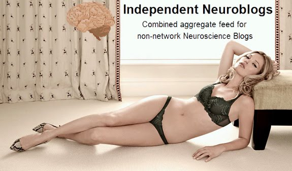 Independent Neuroblogs as part of the science blogging ecosystem
