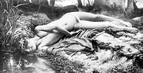 Narcis reabilitat