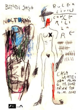Saşa Bandi & Liviu Bulea, Nocturnii / Cancerilizare, Cluj-Napoca, 6-16 noiembrie 2012