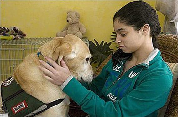 Serviciu psihiatric cu câini