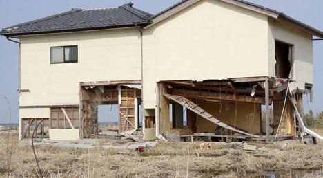 Catastrofa de la Fukushima în obiecte tranziţionale