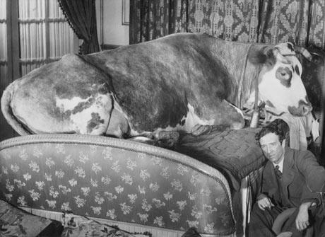 Luis Buñuel, L'Age d'Or / Vârsta de aur, 1930