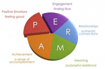 perma model martin seligmann fericire well-being