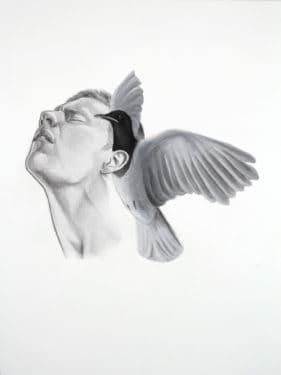 Păsările lui Mantovanelli